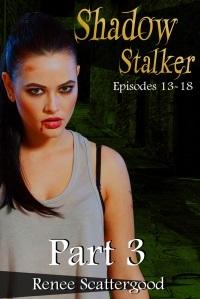 Shadow Stalker Series 3 books