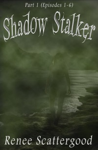 Shadow Stalker Series 3 books