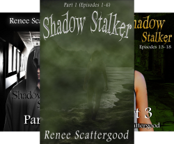 The Beginning of the End: Shadow Stalker Epispode 19