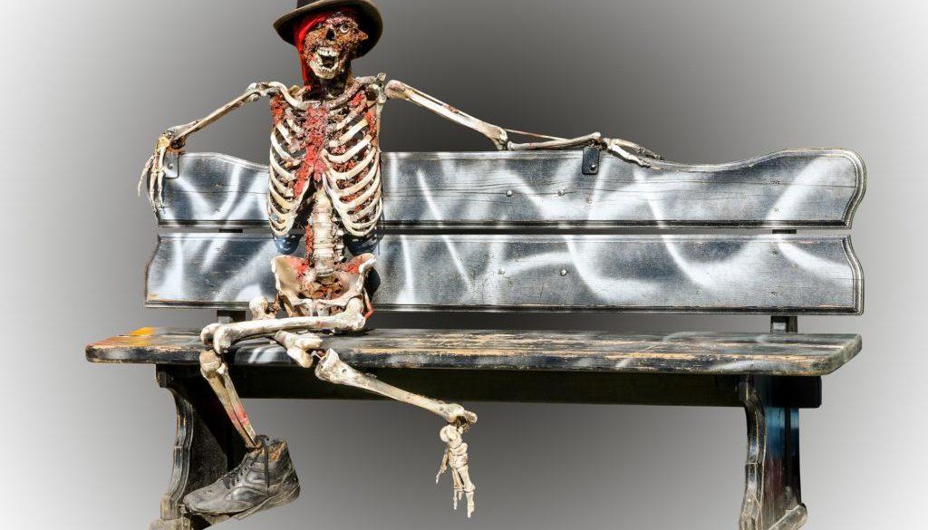 skeleton-973116_1920
