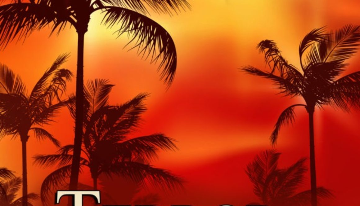 Inspired By Life Romantic Suspense Author J. Q. Rose New Release