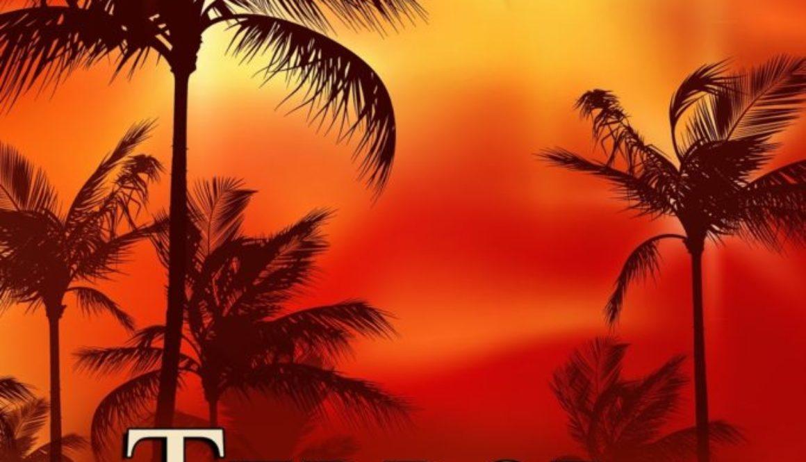 Terror on Sunshine Boulevardby J.Q. Rose Releasing Friday Dec. 15th!