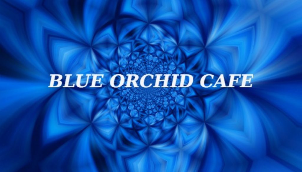 BLUE ORCHID CAFE2